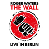 Roger Waters, Sinéad O'Connor & The Band - Mother (Live) artwork