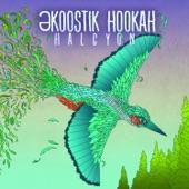 Ekoostik Hookah - Ambrosia