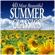 群星 - 40 Most Beautiful Summer Classics