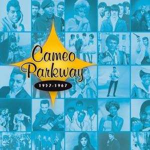 Cameo Parkway 1957-1967 (Original Hit Recordings)