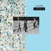 Twerps - Consecutive Seasons