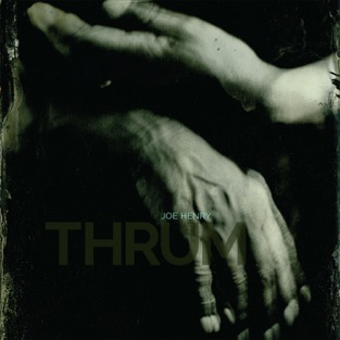 Thrum – Joe Henry