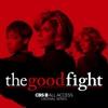 The Good Fight, Season 2 wiki, synopsis