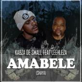 Amabele Shaya (feat. Leehleza)