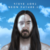Waste It on Me feat BTS - Steve Aoki mp3