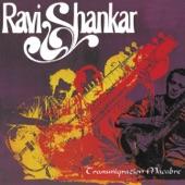 Ravi Shankar - Transmigration