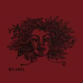 Mulamba-Mulamba