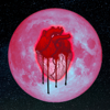 Chris Brown - Privacy artwork