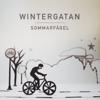 Wintergatan - Sommarfågel ilustración