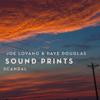 Scandal (feat. Lawrence Fields, Linda May Han Oh & Joey Baron) - Joe Lovano & Dave Douglas Sound Prints
