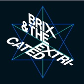 Brix & The Extricated - Temporary Insanity