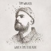 Tom Walker feat. Zara Larsson - Now You're Gone