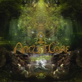 Ancient Core - Eastern Fields