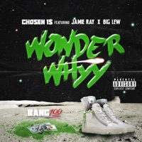 Wonder Whyy (feat. Big Lew & Jamie Ray) - Single Mp3 Download