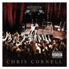 Chris Cornell - Black Hole Sun (Live At Queen Elizabeth Theatre, Toronto, ON April 20, 2011) kunstwerk