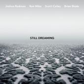 Joshua Redman - Comme Il Faut (feat. Ron Miles, Scott Colley & Brian Blade)