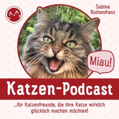 Miau Katzen-Podcast - für Katzenfreunde, die ihre Katze wirklich glücklich machen möchten