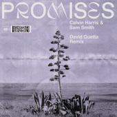 Promises (David Guetta Extended Remix)