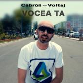 Vocea Ta (feat. Voltaj)