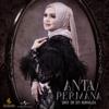 Siti Nurhaliza - Anta Permana artwork