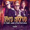 MC Vinny, Lenzi & Pelé MilFlows - Tempo Perdido  arte