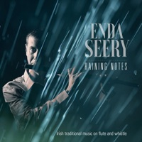 Raining Notes by Enda Seery on Apple Music