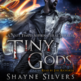 Tiny Gods: Temple Chronicles, Book 6 (Unabridged) audiobook