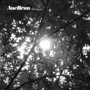 Ane Brun - Big In Japan