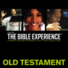 Zondervan - Inspired By … The Bible Experience Audio Bible - Today's New International Version, TNIV: Old Testament  artwork