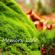 Rebecca Jody - Memory Lane