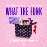 What the Funk (feat. Danny Shah) [Steve Aoki Remix] - Single