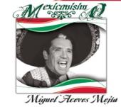 Miguel Aceves Mejía - Cariño Nuevo