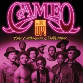Cameo - A Good-Bye