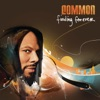 Finding Forever, Common