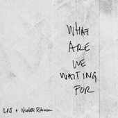 [Download] What Are We Waiting For (feat. Nicolette Robinson) MP3