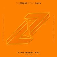 A Different Way (feat. Lauv) [Noizu Remix] - Single Mp3 Download
