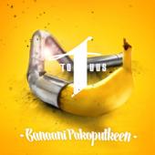 Banaani pakoputkeen