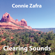 Clearing Sounds - Connie Zafra