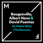 No Matter What (VIP Mix)