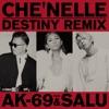 Destiny (Remix) [feat. AK-69 & Salu] - Single ジャケット写真