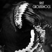 The Groundhogs - A Year In The Life