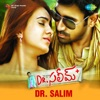 Dr Salim Original Motion Picture Soundtrack EP