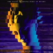 The Pains Of Being Pure At Heart - My Only