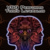 VSQ Performs Tool's Lateralus, Vitamin String Quartet
