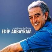 Edip Akbayram - İnce İnce Bir Kar Yağar