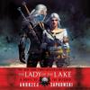 Andrzej Sapkowski - The Lady of the Lake  artwork