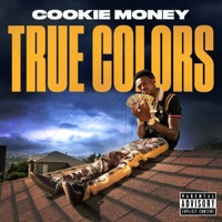 True Colors - Single Mp3 Download