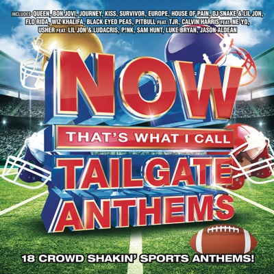 NOW That's What I Call Tailgate Anthems - Various Artists album