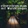 Meditation Schlafen - Entspannende Musik mit Waldklängen - Klaviermusìk Modern