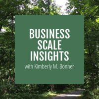 Business Scale Insights podcast